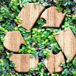 Smaltimento rifiuti industriali: analisi e normative