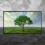 Nuovo televisore led, come sceglierlo